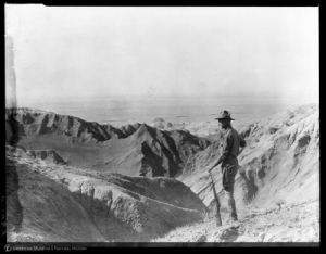 "Shackelford, James B., ""Roy Chapman Andrews in the badlands of Urtyn Obo, Mongolia, 1928,"" AMNH Digital Special Collections, accessed January 24, 2015, http://images.library.amnh.org/digital/items/show/26127."