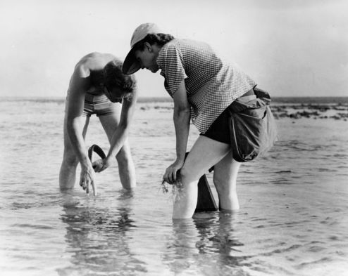 Rachel_Carson_Conducts_Marine_Biology_Research_with_Bob_Hines.jpg