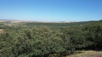 Sierra Atapuerca, photo: Roberto Sáez