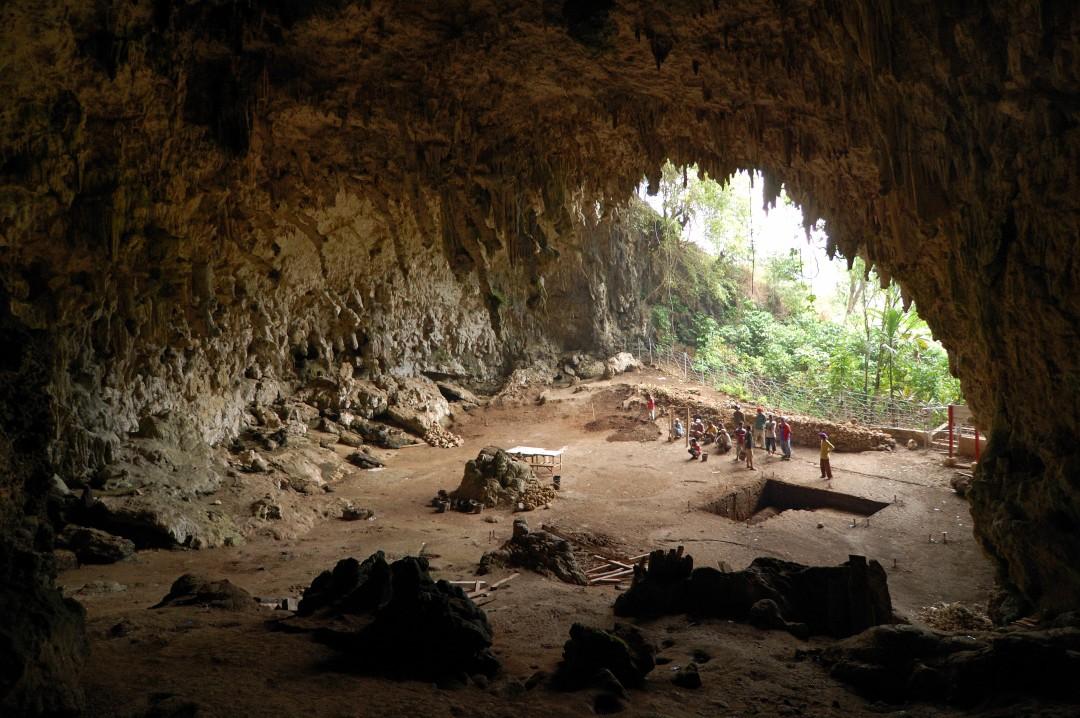 Homo_floresiensis_cave (1)