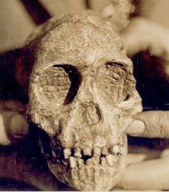 Taung Child http://bit.ly/1PS4AXE