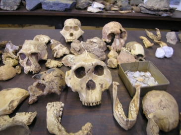 Fossil Hominid Sites of South Africa (South Africa)