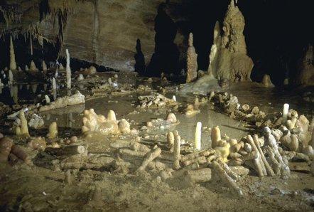 France Neanderthal Ruins