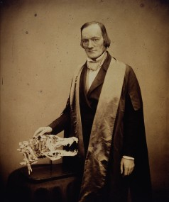 Sir_Richard_Owen._Photograph_by_Maull_&_Polyblank._Wellcome_V0026949.jpg