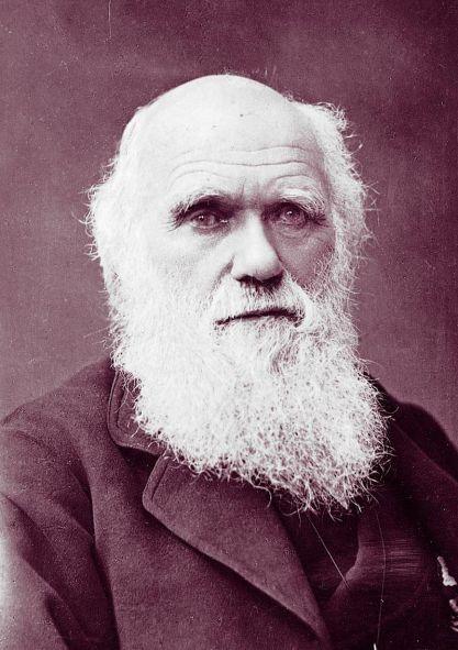 Charles_Darwin_photograph_by_Herbert_Rose_Barraud,_1881_2